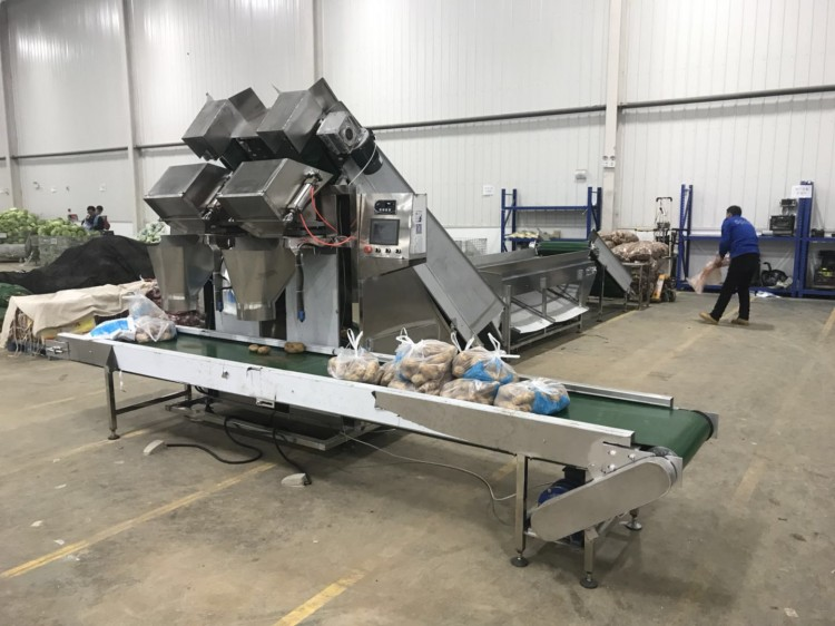 土豆洋葱定量包装机,土豆定量打包机